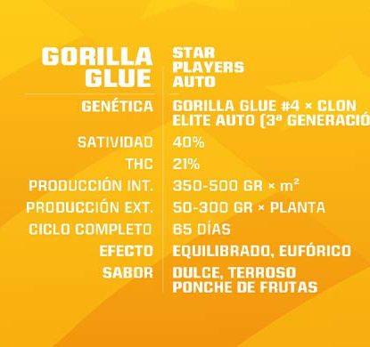 Gorilla Glue Cannabis Samen autoflowering Produktbeschreibung aus dem Sensoryseeds Shop