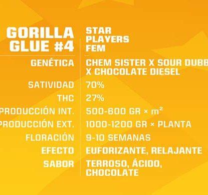 Gorilla Glue feminisierte Cannabis Samen Produktbeschreibung aus dem Sensoryseeds Shop