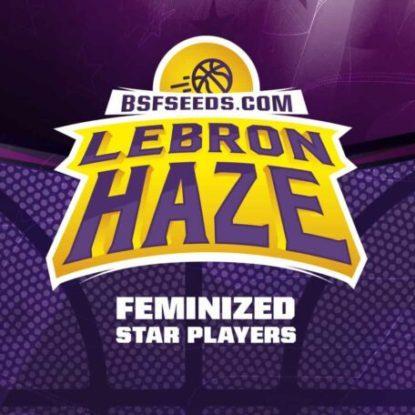 Logo von Lebron Haze um feminisierte Cannabis Samen BSF bestellen