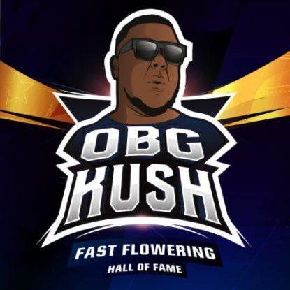 Logo von Obg Kush um schnelle Cannabis Samen BSF bestellen