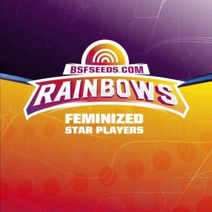 Logo von Rainbows um feminisierte Cannabis Samen BSF bestellen
