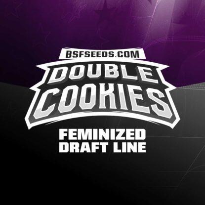 Titelbild von Double Cookies Produktbeschreibung um Cannabis Samen feminisierte BSF bestellen