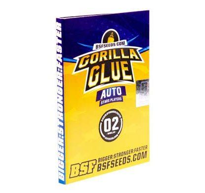 Titelbild von Gorilla Glue Produktbeschreibung mit Cannabis Samen autoflowering BSF Informationen