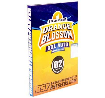SensorySeeds Autoflowering Orange Blossom Semen Paket