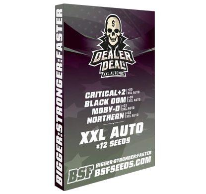 Kit mit auto Cannabissamen Dealer Deal XXL Automix von Sensoryseeds Shop