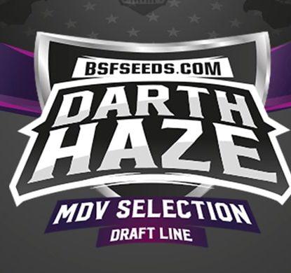 Logo von Darth Haze um feminisierte Cannabis Samen BSF bestellen