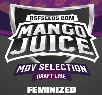Logo von Mango Juice um feminisierte Cannabis Samen BSF bestellen