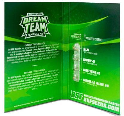 Titelbild von Dream Team Feminized Mix Produktbeschreibung mit Cannabis Samen BSF Informationen