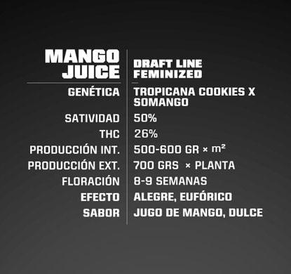 Titelbild von Mango Juice Produktbeschreibung um Cannabis Samen feminisierte BSF bestellen