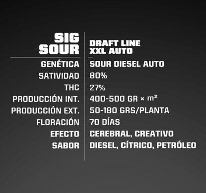 Sig Sour XXL Auto Info