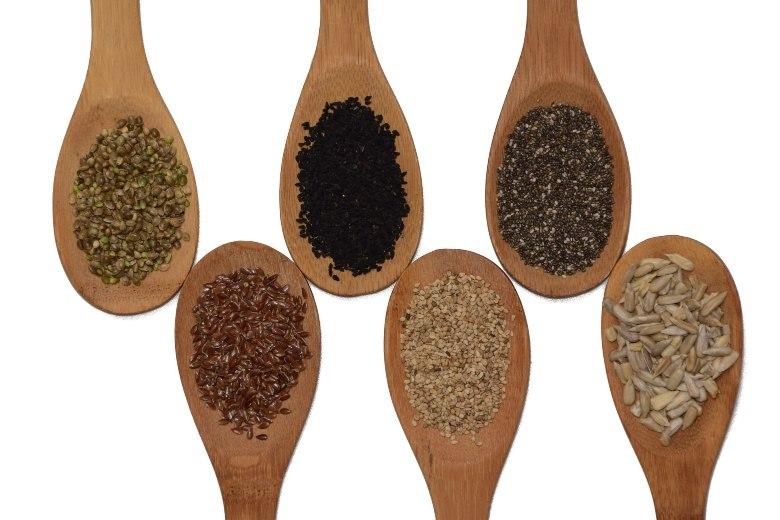 Cannabis Samen und Steinwolle