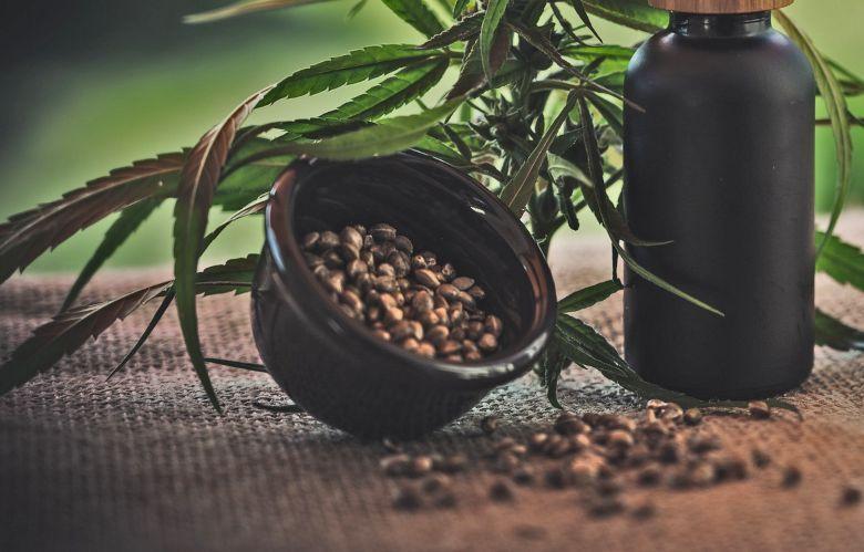 Konservierung von cannabis Samen autoflowering
