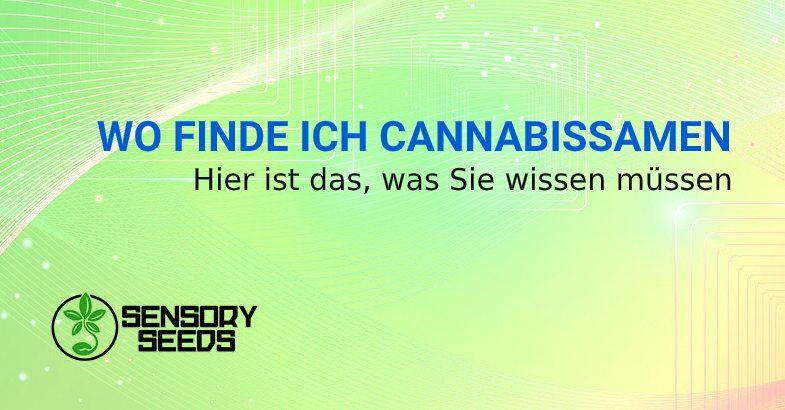 Wo finde ich Cannabissamen