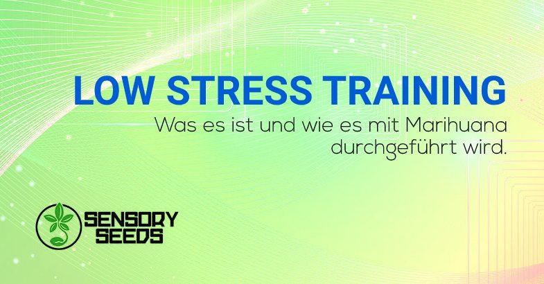 Low stress training Was es ist