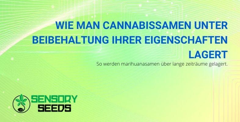 Wie man Cannabissamen unter Beibehaltung ihrer Eigenschaften lagert