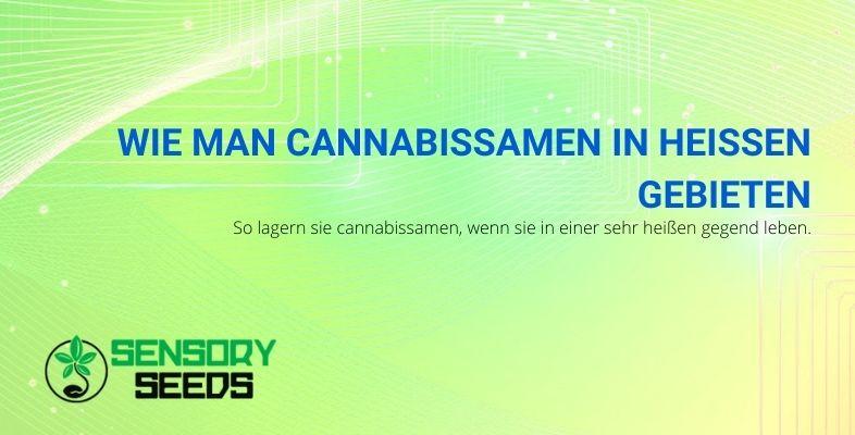 Wie man Cannabissamen in heißen Gebieten lagert
