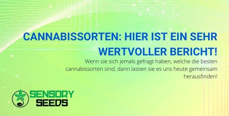 Sehr wertvoller Bericht über Cannabis-Sorten
