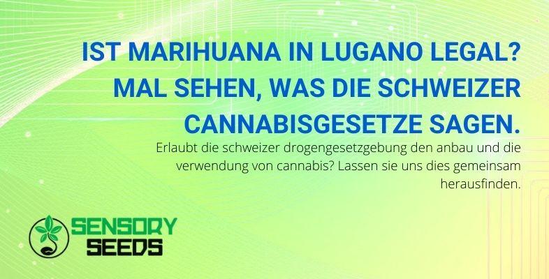 Können Sie nach schweizerischem Recht Cannabis in Lugano legal verwenden?