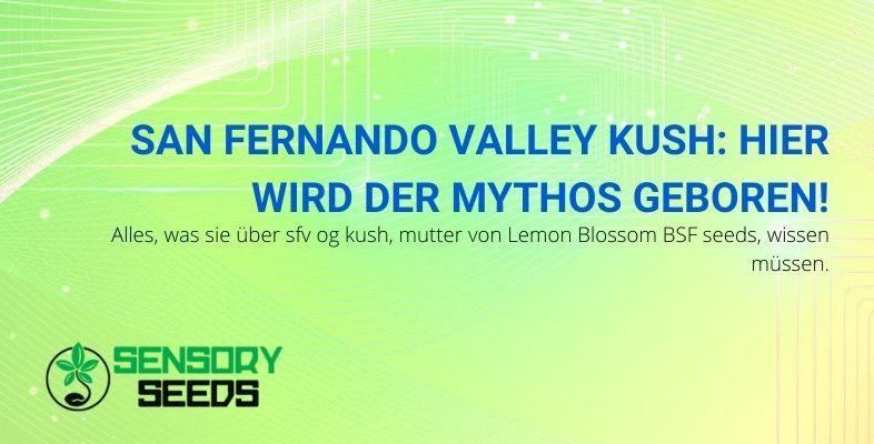 San Fernando Valley Kush: Der Mythos hat seinen Namen von hier
