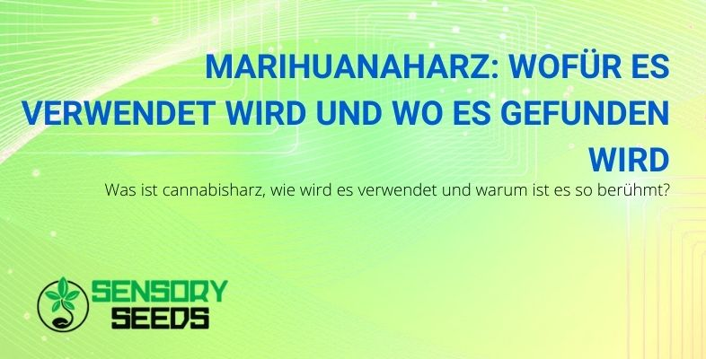 Wofür wird Marihuana-Harz verwendet und wo wird es gefunden?