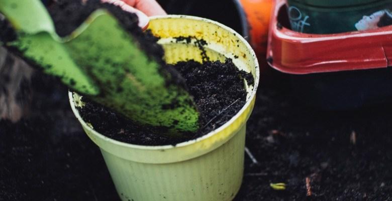 Person, die dem Kompost Vermicompost hinzufügt