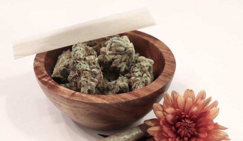 Sinsemilla Cannabis, kraftvoll und aromatisch