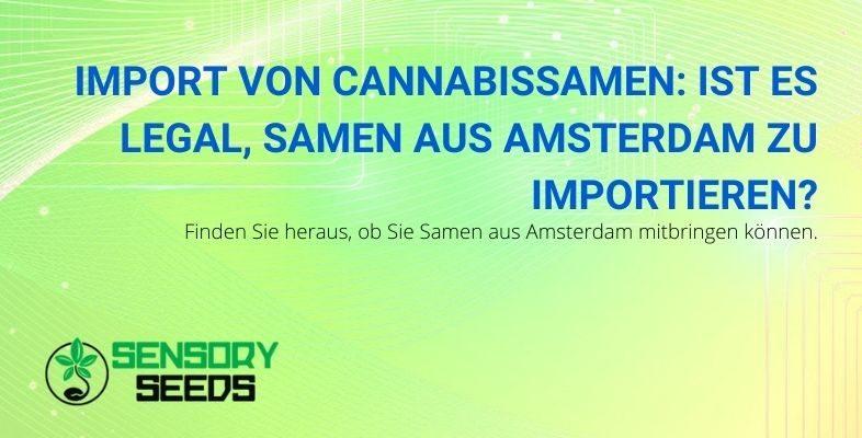 Ist es legal, Cannabissamen aus Amsterdam zu importieren?