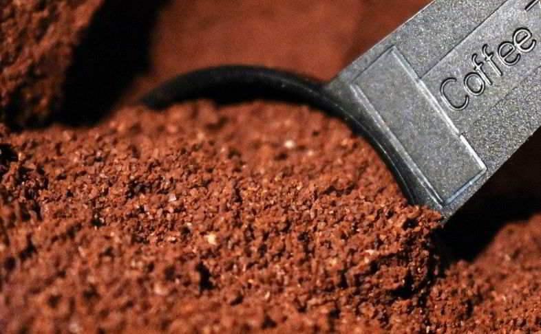 Kaffee als natürlicher Dünger für Pflanzen