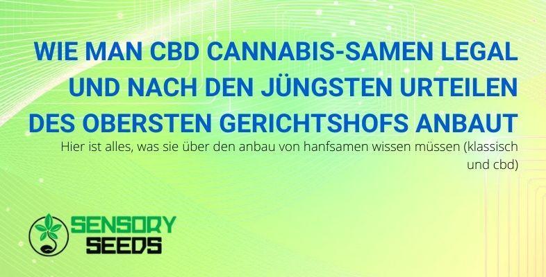 So züchten Sie legal leichte Cannabissamen