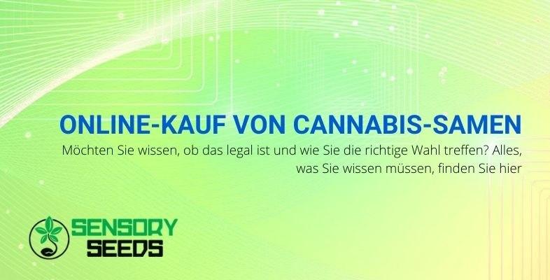 Regeln für den Online-Kauf von Cannabissamen.