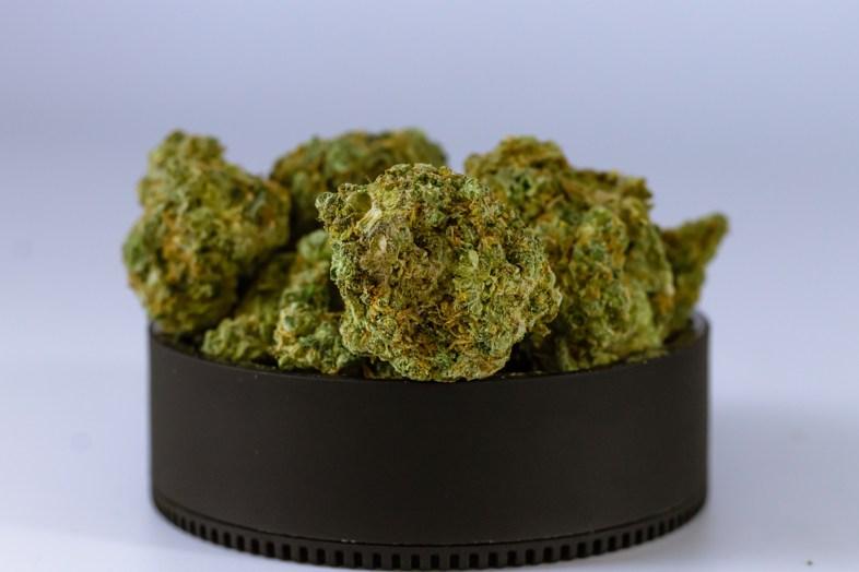 Eine glänzende Zukunft für Cannabis-Händler vorgezeichnet